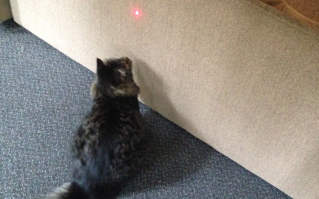 Laser Pointers are not Therapy Lasers